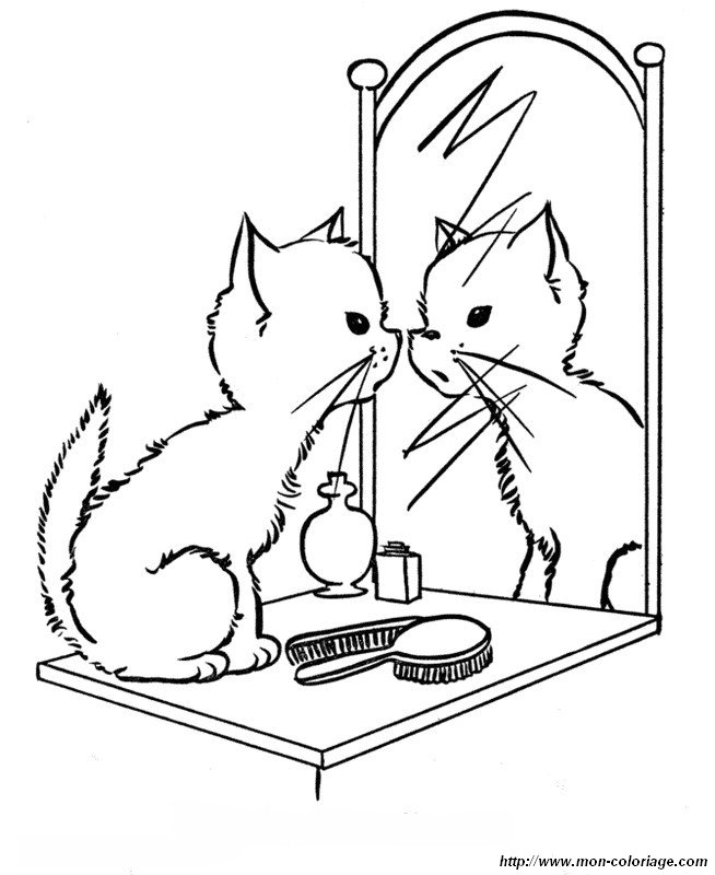 picture a kitten in front of a mirror