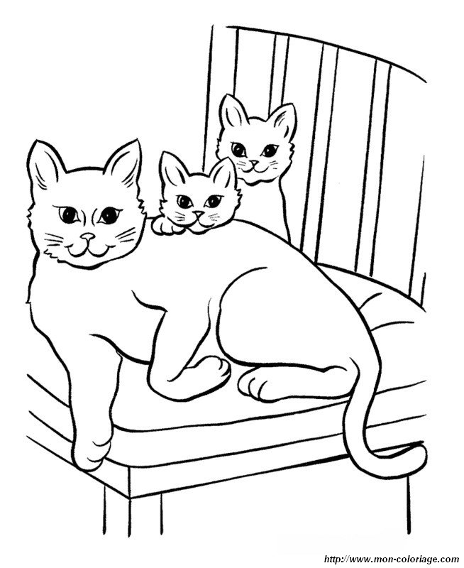 picture a mother cat and her children