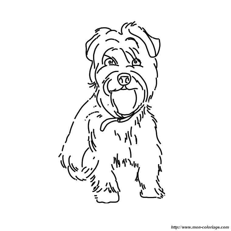 Yorkie poo coloring pages coloring pages for Yorkie coloring pages