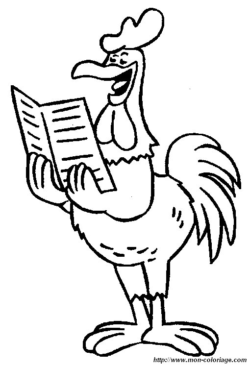 picture reading rooster