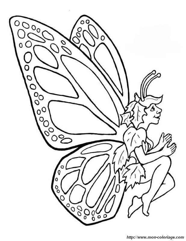 Coloring fairy page curious butterfly for Butterfly fairy coloring pages