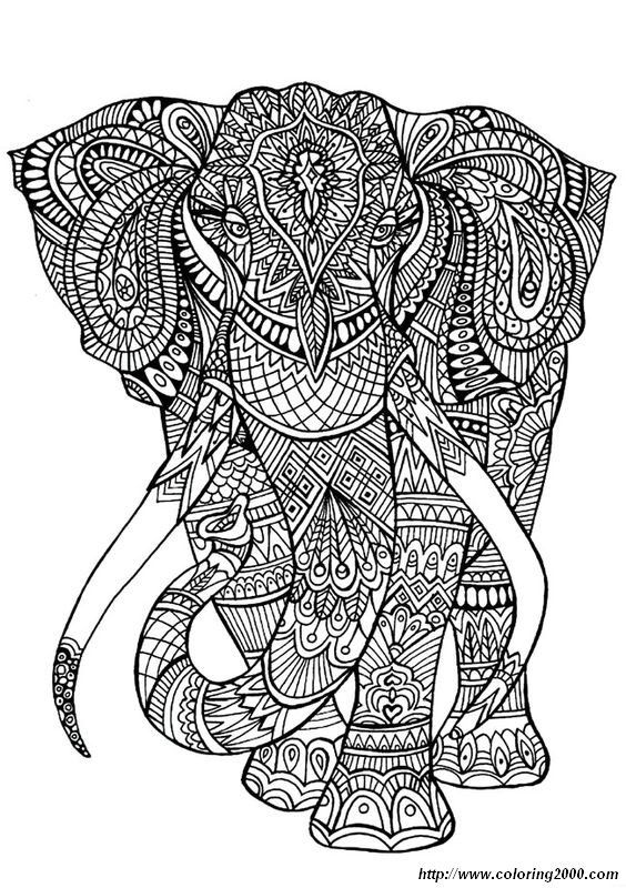 picture Elephant coloring pages