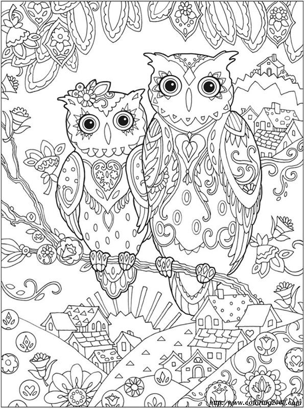 picture Owls Couple