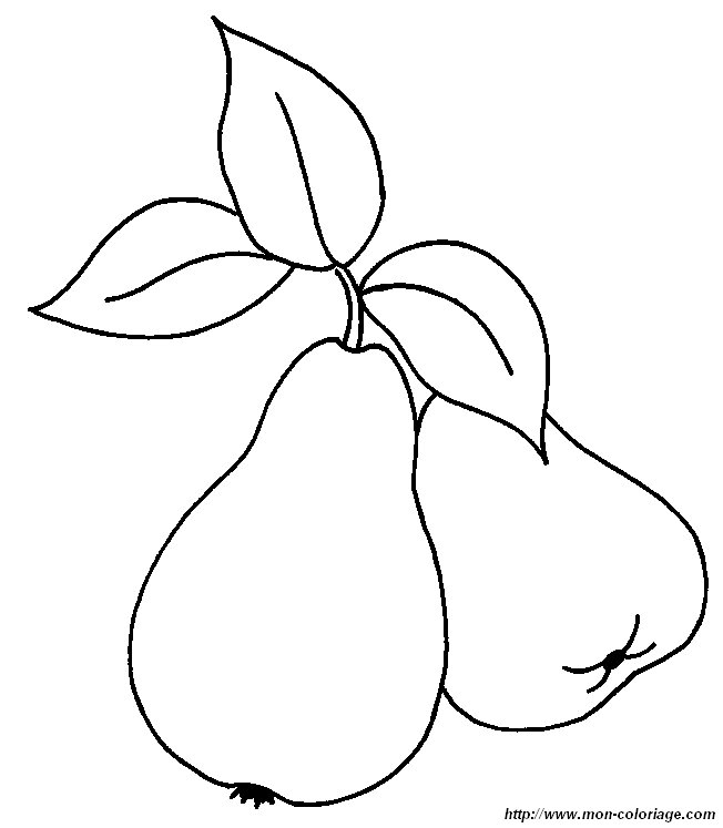picture pear
