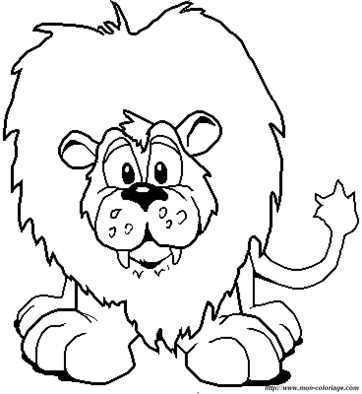 picture lions 006