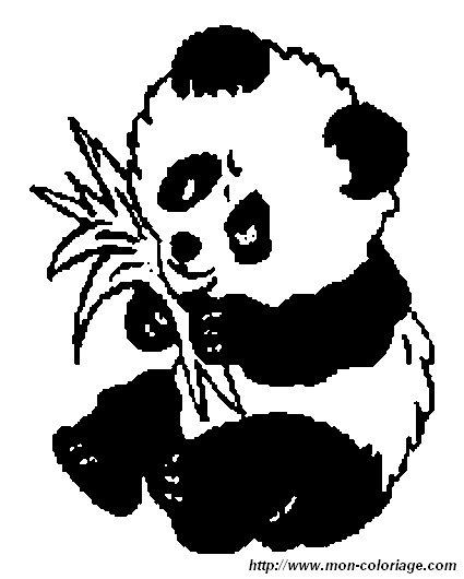 coloring panda page panda6