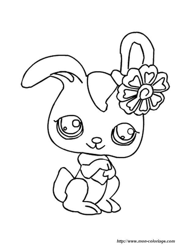 picture rabbit and flower