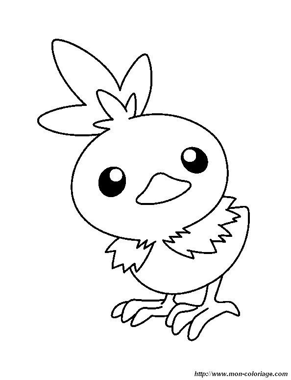 Coloring Pokemon Page Pokemon Little Bird